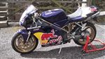 Ducati 996 John Reynolds racing replica (1999/T)