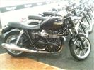Triumph BONNEVILLE 800 Jet Black Edition (2010/59)
