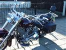 Harley Davidson SOFTAIL Custom chrome (1999/W)
