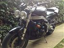Triumph SPEED TRIPLE 955I  (2001/51)