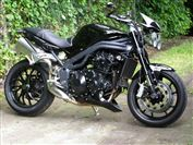 Triumph SPEED TRIPLE 1050  (2009/59)