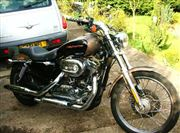 Harley Davidson SPORTSTER 1200 Custom chrome engine (2005/55)